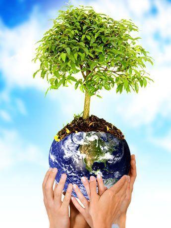 meio_ambiente